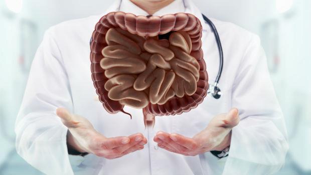 大腸鏡檢查前必看》看過2萬多人腸道...腸胃科醫師:一張圖教你這樣吃,檢查才不會白做了