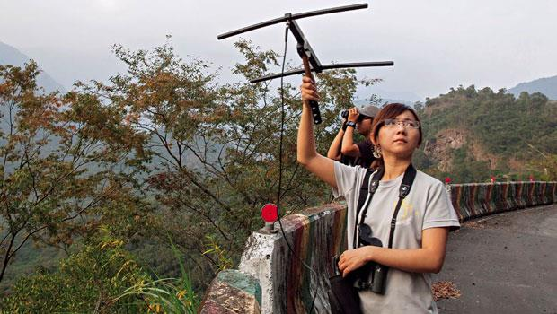 沈振中接棒者林惠珊(圖)在黃昏老鷹回巢時,拿著無線電發報接收器,探查研究老鷹個體的蹤跡。年輕一代研究者的調查方法雖比上一代先進,但關注老鷹之情,卻是兩代相同。