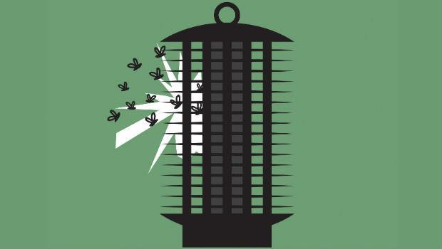 捕蚊燈其實沒有用!從非洲瘧疾區回來的醫師告訴你:防治登革熱,到底該怎麼做