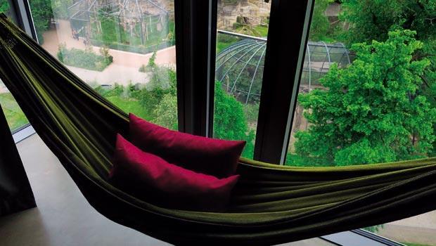窗戶外就是柏林動物園的綠色景致和猴園,既活潑又宜人。