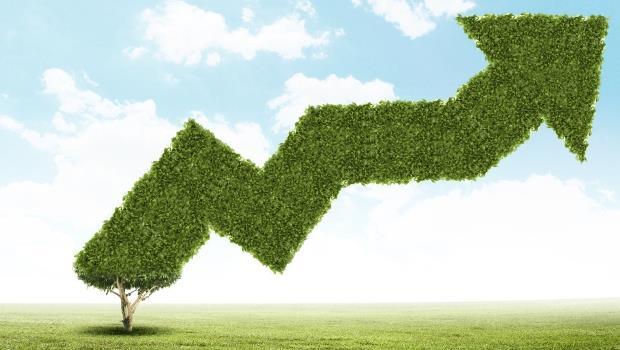 買股票,選「高殖利率股」還是「股利成長股」,哪個賺得多?
