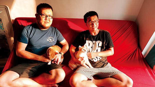 志銘( 左) 和狸貓( 右) 原本記錄7 隻流浪貓生活的臉書,又萌又療癒,變成台灣人氣最高的寵物粉絲頁。