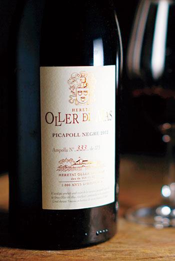 黑皮卡波,質地輕巧卻充滿活力的迷人紅酒。