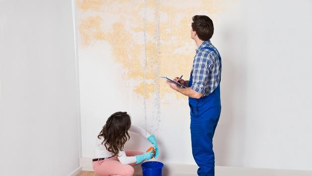 陰雨綿綿家裡漏水,地板跟櫃子也溼!這時你該去看的地方竟是花台?