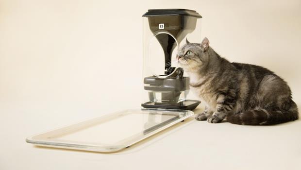 去年募了款卻沒下文的貓臉辨識智慧餵食器,被貓奴追殺後,創辦人終於出面...