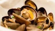 深夜食堂料理》人妻教你3分鐘完成「日式酒蒸蛤蜊」,天冷吃這道最對味