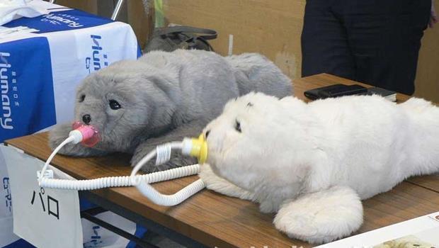 高齡化商機》日本超萌海豹機器人,竟能喚起失智症患者的記憶