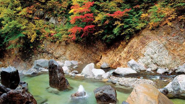 滝見屋屬重度秘湯,位於深山幽谷。徹底脫離現代便利,或許才能真正感受大自然的溫度。