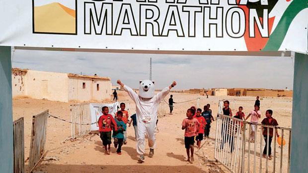 在撒哈拉沙漠奔跑的北極熊,逗樂難民營的小朋友。