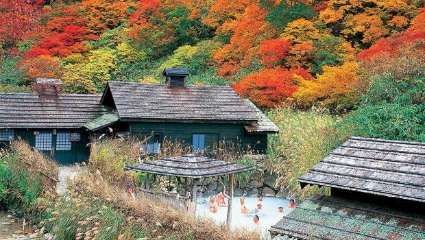 秋天泡鶴之湯,楓紅相伴。相伴的還有朋友。日本人超喜歡泡湯,彼此袒裎相見,坦蕩自在。