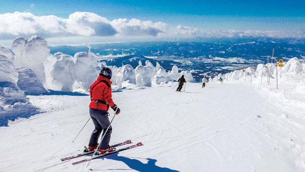 在兩側樹冰的包圍下,從山頂滑雪而下。