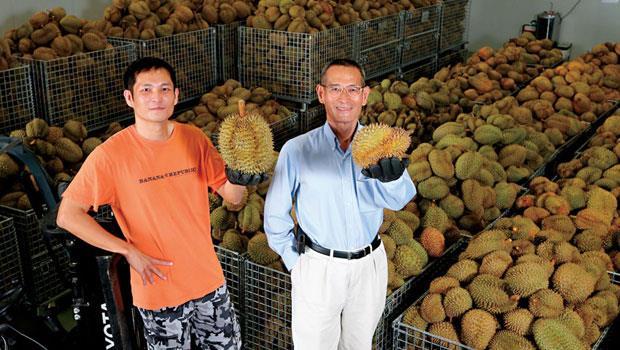 台灣水果商陳盈貴(右)的策略是以泰國榴槤做為銷往中國主力,未來若兩岸局勢有所變化,訂單也不受影響。