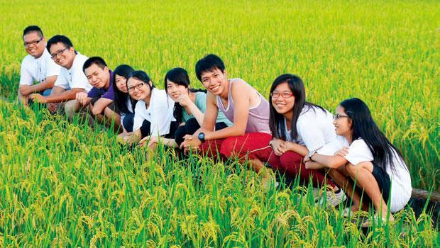 參加「大專生洄游農村計畫」的大學生來鳳林駐村兩個月,學習親近與了解農村。