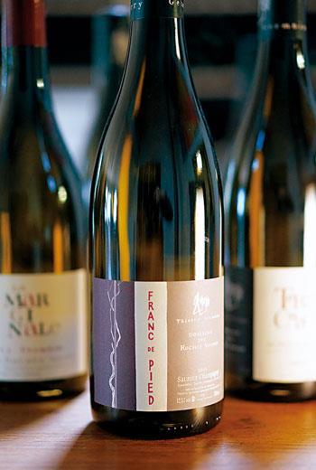 Saumur-Champigny,法國羅亞爾河中部的知名紅酒產區,與Chinon與Bourgueil齊名。