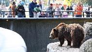 一趟動物園之旅,讓16個小孩重新思考「動物園的意義」》你贊成動物園嗎?