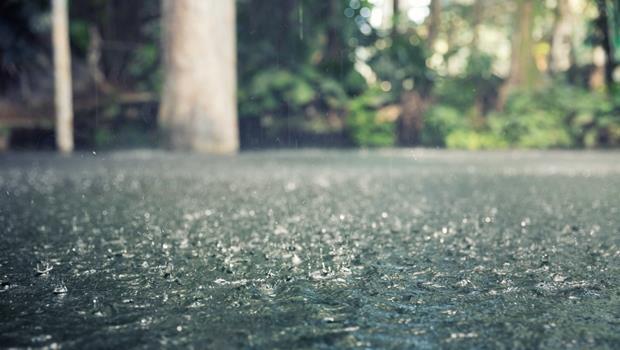 豪雨水淹桃機》氣象局發布「大雨特報」,英文怎麼說?