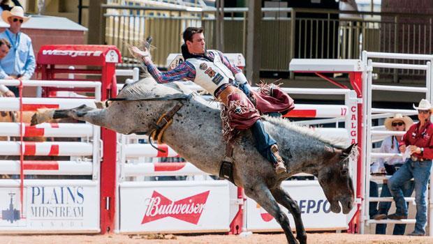 提姆‧歐康納參加卡加利牛仔節無鞍騎乘競技賽,最後勇奪亞軍。