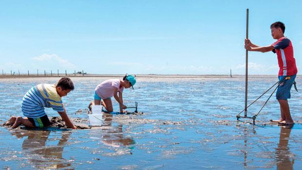 踏上外傘頂洲土地的感覺,不同於一般沙灘,泥沙濕軟,和著吸收太陽溫度的溫暖海水。小朋友試著用漁夫的器具耙文蛤,或直接用小鏟子尋寶。