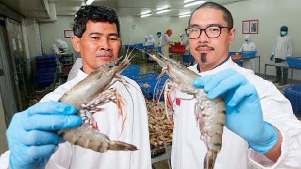 一群台灣青年,在赤道小島打造38億生態蝦王國