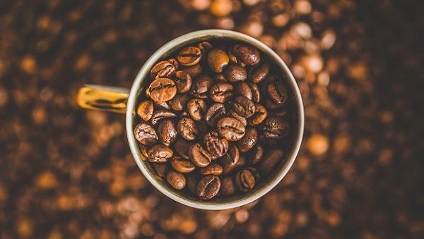 董事長種豆 驚豔國際咖啡界教母