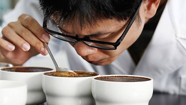 尋味!極品咖啡的不凡身世