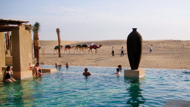泳池畔驚現駱駝隊伍