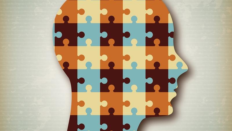 哪隻才是獅子王?一個心理測驗發現你的優點,還能學會12個形容個性的英文單字