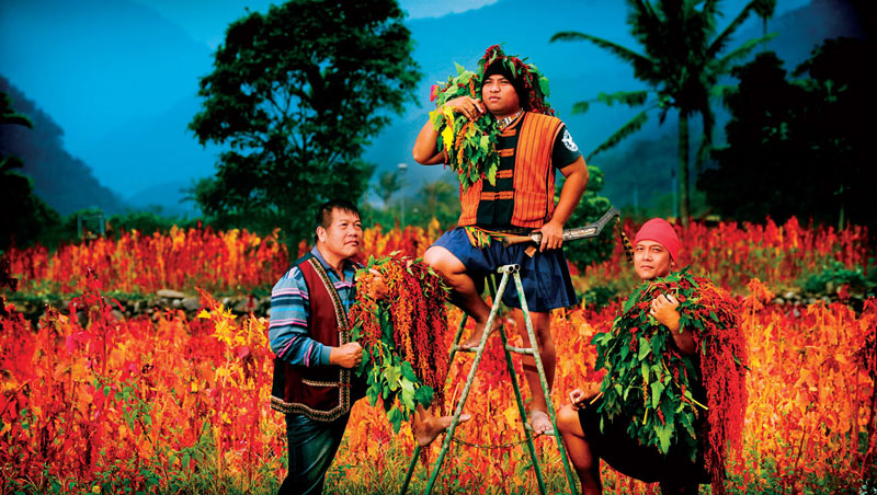 吳正忠(中)帶動部落青年返鄉,如今年收入400萬的他說:「我要讓部落的人看到,不打零工,也可以在部落好好過日子。」