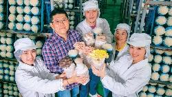 花千萬蓋晶圓廠等級無塵室,竟是為了種香菇?他種的菇,萬豪、王品都搶著用!