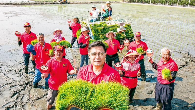 陳肇浩( 中) 率農戶與台大農藝系等單位合作,從源頭管理,去年自63 隊中奪全國名米非香米組產地總冠軍。