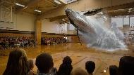 16公尺座頭鯨,瞬間從體育館地板一躍而出,掀起大浪花!比AR、VR更厲害的MR來了