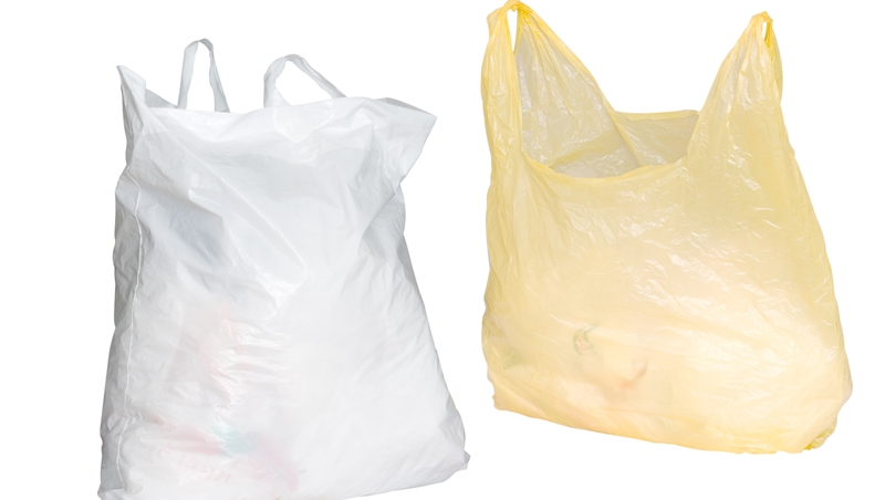 幼蟲就能吃掉塑膠袋!科學家新發現:這種「蛾」竟能快速分解塑膠