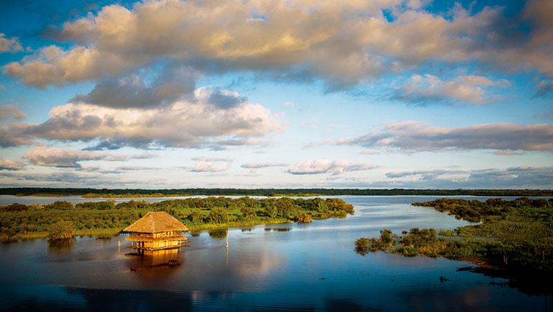 前進秘魯伊基托斯的亞馬遜河流域,體驗雨林神秘與蠻荒。