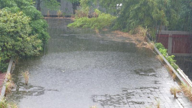 鋒面滯留,周末降雨更強下更久!尤其「這一天」,全台都需小心豪雨又成災