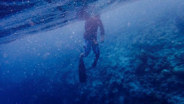 潛水時的一個善念,讓原本想要抓交替的好兄弟,成了救他一命的恩人