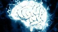 馬斯克口中的「腦機合一」成真!美國南加大首次人體實驗證實:大腦植入裝置可提升記憶30%