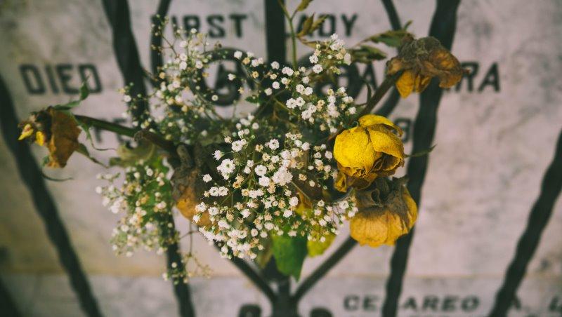 你的墓誌銘,會想寫「臉書有多少個讚」嗎?40歲後,用5個問題找出人生最重要的事