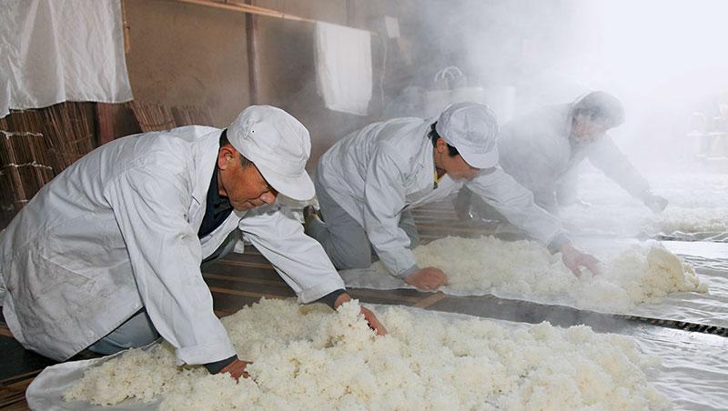 福島的好米造就這裡出產高品質的日本酒,已連續5年獲得大獎。