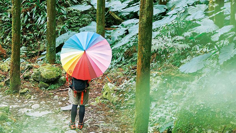 為了拍一張美圖,讓旅人感官與視角都放大了。同行山友變成模特兒或比例尺,就連在山林小屋巧遇的貓咪,也是題材。想增加驚喜,熊明龍說,萬用道具彩虹傘能成為綠林中的一抹顏色。