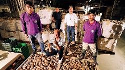 引進認股薪酬制,吸引台大碩士、上班族加入!地瓜農場經理人,平均35歲年薪上看百萬