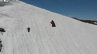 網路瘋傳的「小熊爬雪山」影片,背後真相告訴你:無人機便利帶來的隱憂