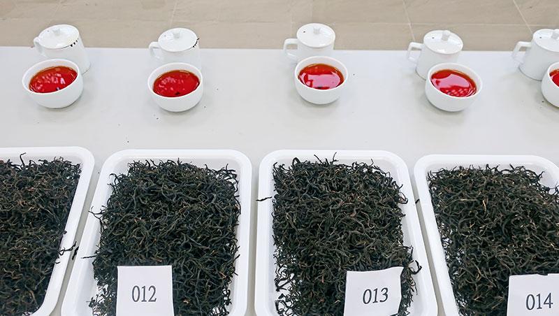 今年得獎茶款中,值得一提的是勇奪台茶十八號紅玉組特等獎、來自年輕製茶師莊鎔璞之作品,香與味與韻皆活潑明亮,層次豐富奔放。會後問他訣竅,他說,連日下雨、茶菁品質不佳,遂刻意請茶農延後採收,讓茶樹留養,同