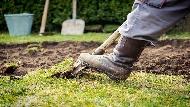 為了工作挖墓穴、成天抱冰冷的狗屍體...諮商師:更生人父親,教會我比賺錢更重要的事