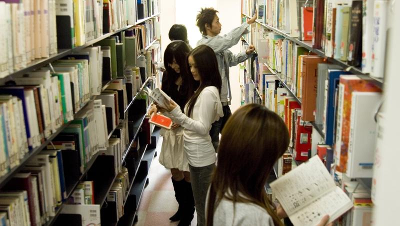 經濟系的當工程師、理工科的做廣告文案...從日本嚴重的「學非所用」,看被科系綁架的台灣學生