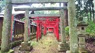 不想跟團又懶得排行程的新選擇!達人公開:跟著日本機場免費導覽服務,遊鄉村、訪700年古寺