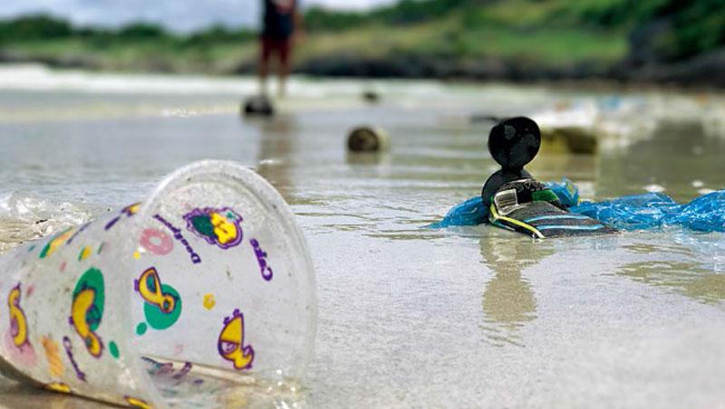 塑膠杯、飲料瓶、餐具、購物袋等一次性塑膠製品占海洋垃圾的50%,禁塑政策趨嚴,將為所有人的生活帶來明顯變化。