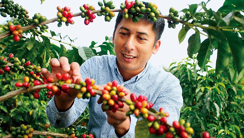 鄒築園咖啡負責人、嘉義縣咖啡產業發展協會理事長方政倫
