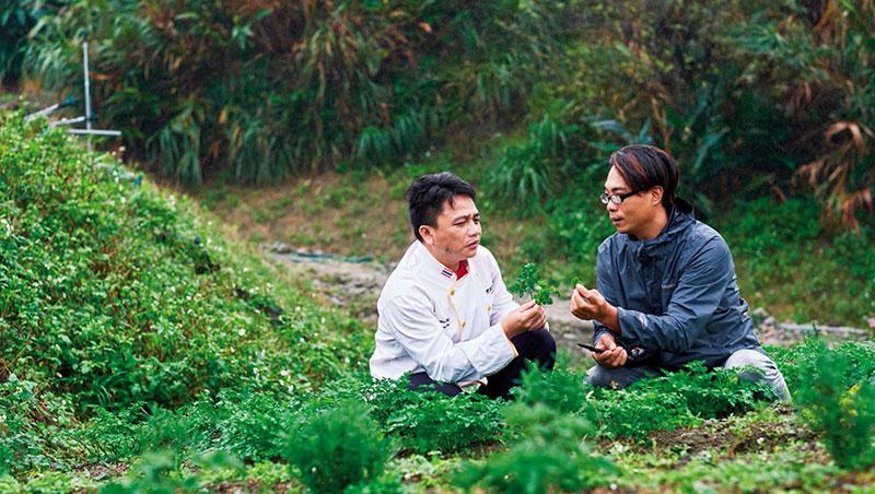 寧靜海香草園負責人、新北市青年農民聯誼會第二屆會長王御庭(圖右)