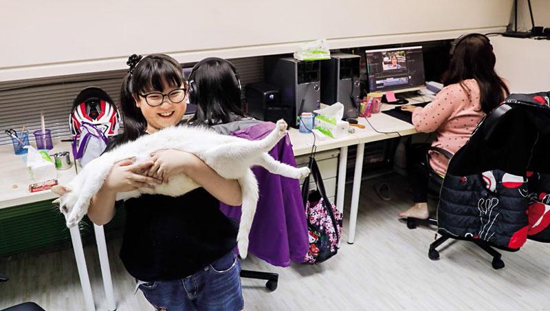 這是妞妞TV工作室,妞妞有空就來找貓玩、拍影片,對她來說,這都是在玩樂。但爸媽很留意她的身心發展,不僅一起陪看影片,也把關社群回饋。