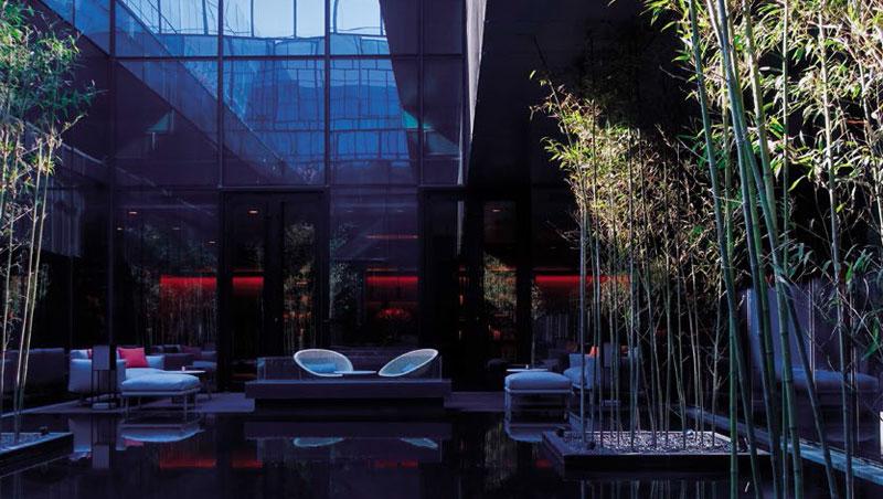 接待處中庭有個水池,再配上竹子,便營造出寧靜祥和的氛圍。
